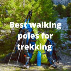 picture of walking poles for trekking